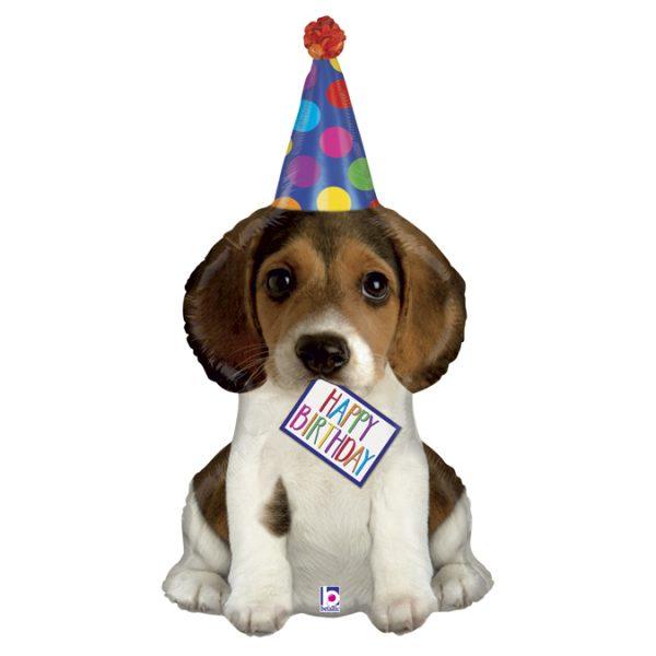 35561-Birthday-Puppy